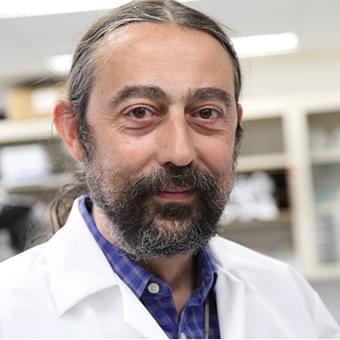 Speaker Prof. Adolfo García-Sastre