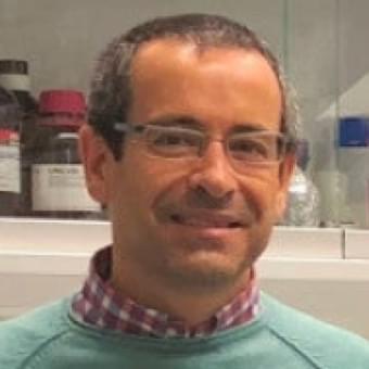 Speaker Prof. Antonio Salas Ellacuriaga